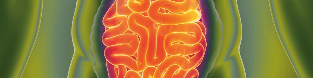 Diagnostic - Humans - Stool Analysis - Gut - Stomach